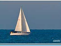 sailingd7835