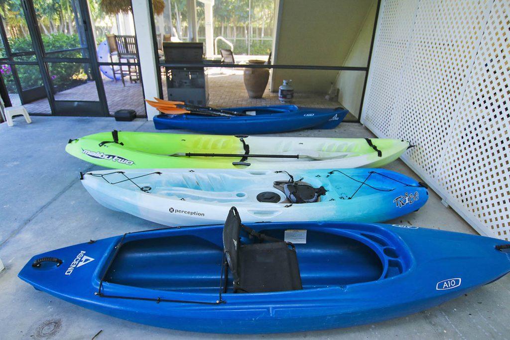 Perception captiva kayak